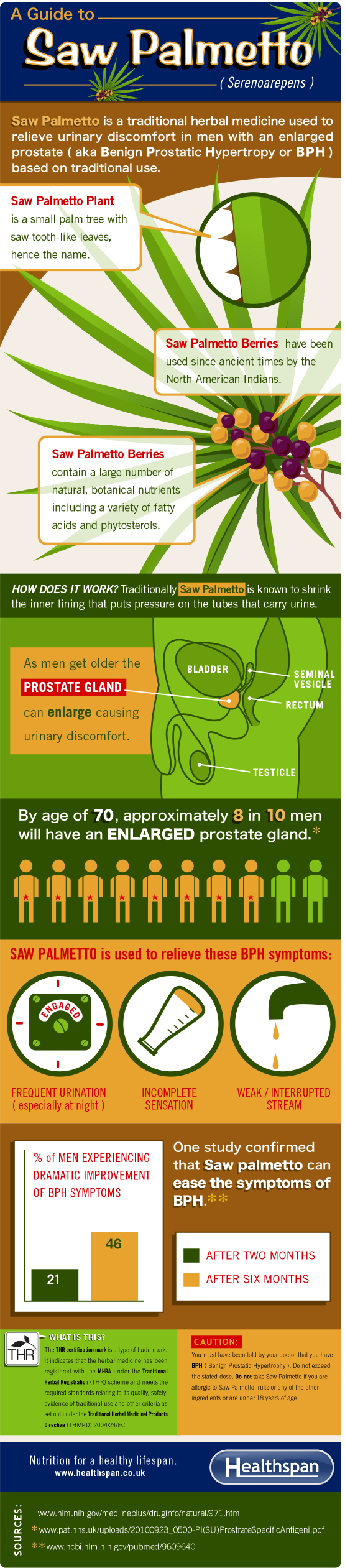 Saw Palmetto - The benefits of saw palmetto for an enlarged prostate - infographic - Healthspan